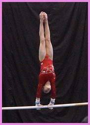 everest gymnastics meet results